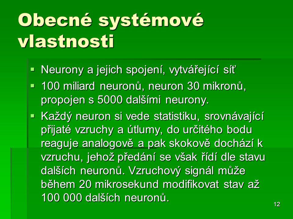 12 Obecné systémové vlastnosti  Neurony a jejich spojení, vytvářející síť  100 miliard neuronů, neuron 30 mikronů, propojen s 5000 dalšími neurony.