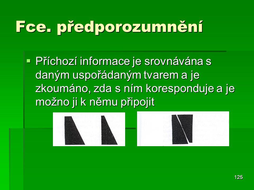 125 Fce. předporozumnění  Příchozí informace je srovnávána s daným uspořádaným tvarem a je zkoumáno, zda s ním koresponduje a je možno ji k němu přip
