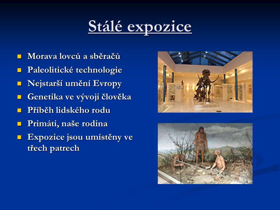 Charakteristika V úterý 14. 10. 2008 jsme navštívili Pavilon Anthropos při exkurzi do Brna. Představuje člověka a jeho rod v minulosti. V něm se nachá