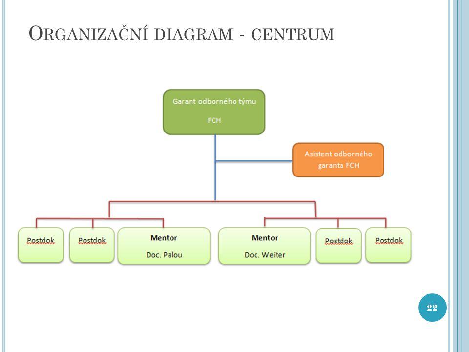 O RGANIZAČNÍ DIAGRAM - CENTRUM 22