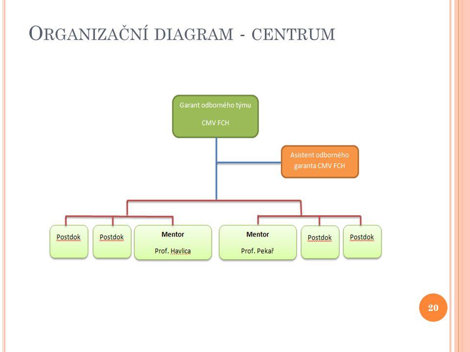 O RGANIZAČNÍ DIAGRAM - CENTRUM 20