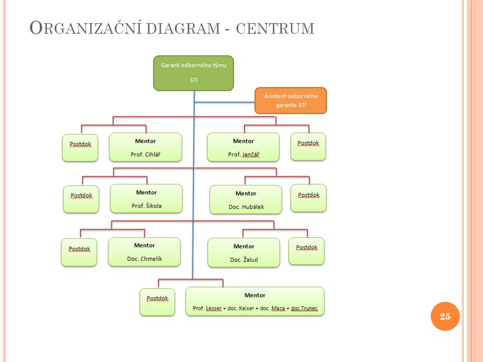 O RGANIZAČNÍ DIAGRAM - CENTRUM 25