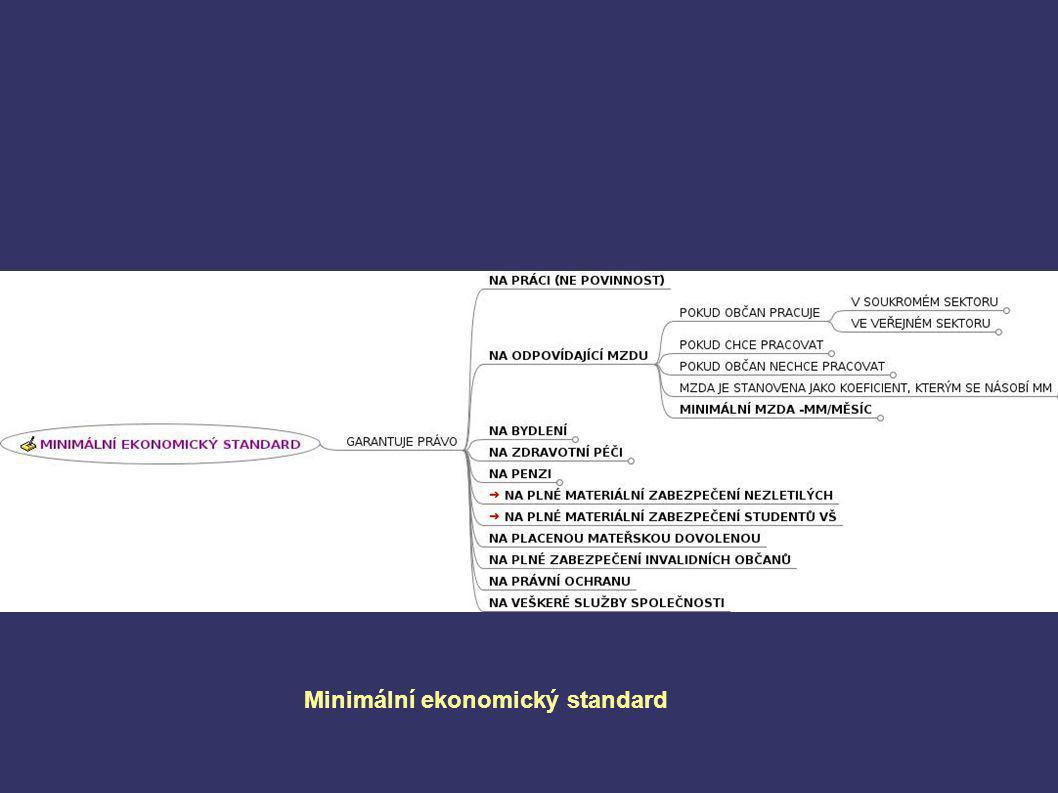 Plánované nebo tržní hospodářství (2 sektory) Dlouhodobé, střednědobé a krátkodobé vize Reálná ekonomika x virtuální Princip průběžnosti Princip místní příslušnosti Svobodná volba a odpovědnost Objektivní nerovnost občanů (schopnosti, možnosti) Aktivita občanů a subjektů – středobod dění Minimální ekonomický standard