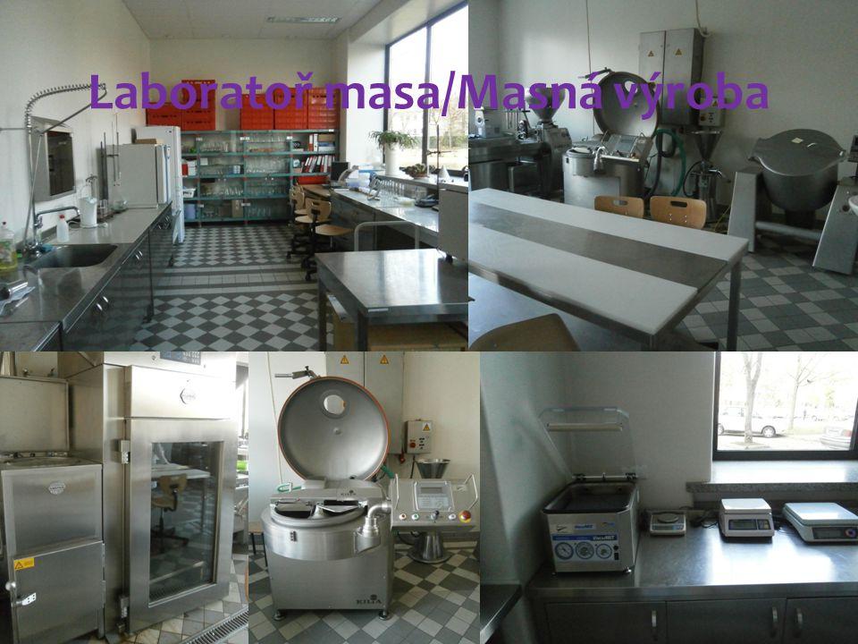 Laboratoř masa/Masná výroba