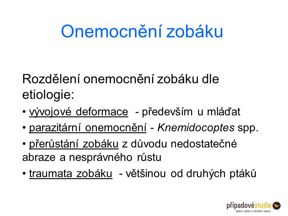 Onemocnění zobáku Rozdělení onemocnění zobáku dle etiologie: vývojové deformace - především u mláďat parazitární onemocnění - Knemidocoptes spp. přerů