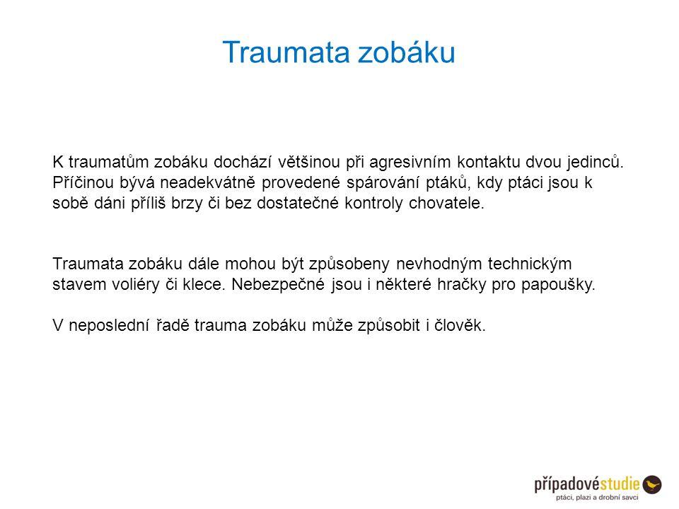 Traumata zobáku K traumatům zobáku dochází většinou při agresivním kontaktu dvou jedinců. Příčinou bývá neadekvátně provedené spárování ptáků, kdy ptá