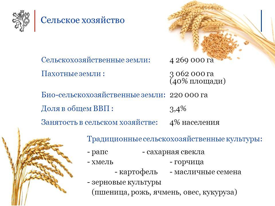 Сельское хозяйство Сельскохозяйственные земли:4 269 000 га Пахотные земли : 3 062 000 га (40% площади) Био-сельскохозяйственные земли: 220 000 га Доля в общем ВВП : 3,4% Занятость в сельском хозяйстве: 4% населения Традиционные сельскохозяйственные культуры: - рапс- сахарная свекла - хмель - горчица - картофель- масличные семена - зерновые культуры (пшеница, рожь, ячмень, овес, кукуруза)