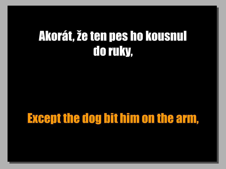 Akorát, že ten pes ho kousnul do ruky, Except the dog bit him on the arm,