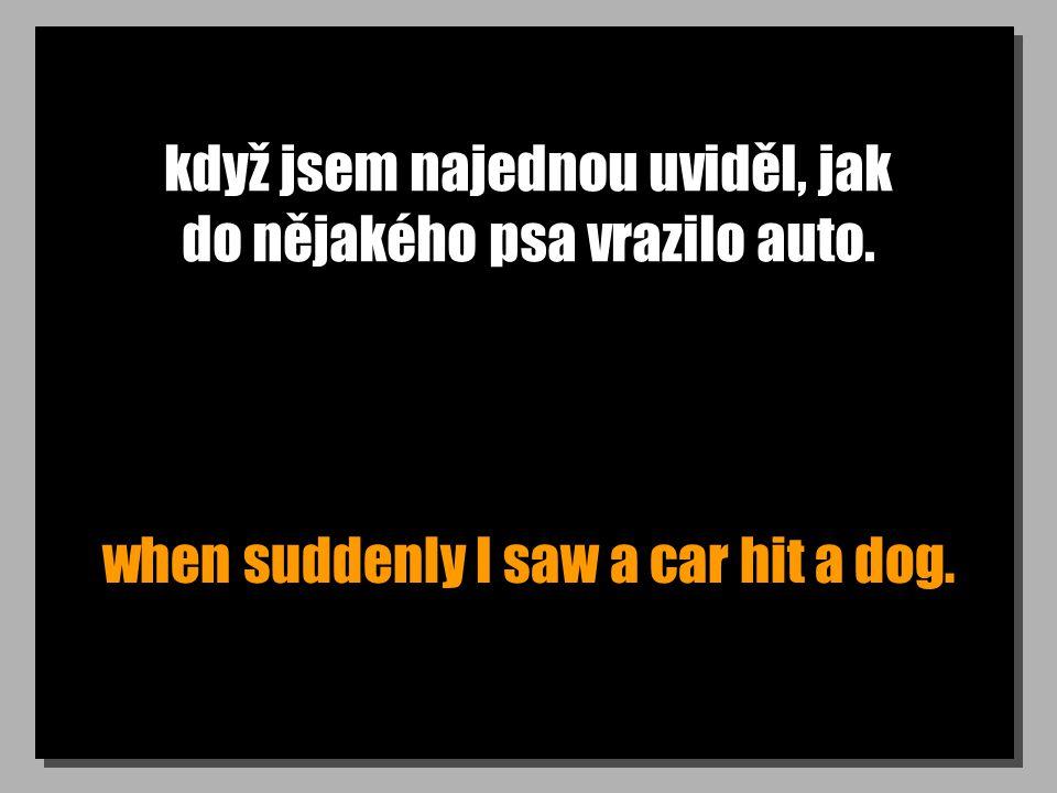 když jsem najednou uviděl, jak do nějakého psa vrazilo auto. when suddenly I saw a car hit a dog.