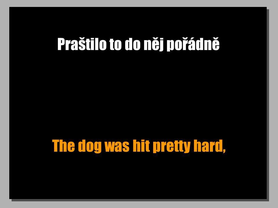 Praštilo to do něj pořádně The dog was hit pretty hard,