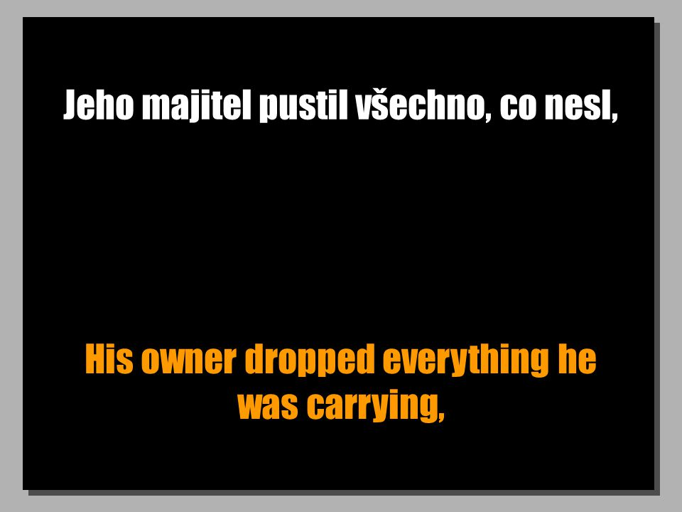 Jeho majitel pustil všechno, co nesl, His owner dropped everything he was carrying,