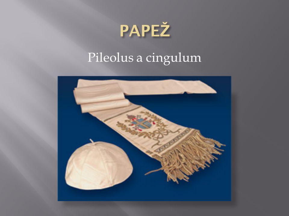 Pileolus a cingulum