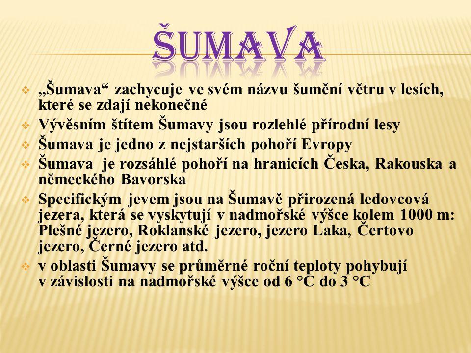  Poté, co byl rys v těchto končinách již v 19.století vyhuben, začaly po roce 1980 na Šumavě snahy o jeho návrat.