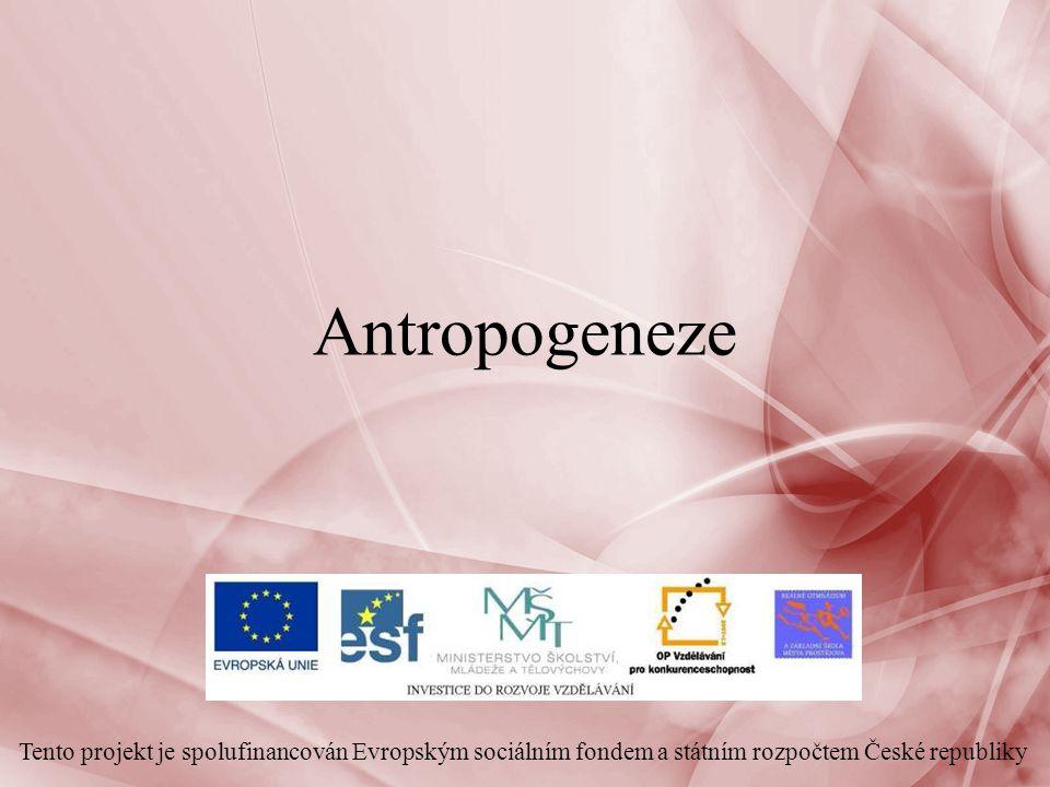 Antropogeneze Tento projekt je spolufinancován Evropským sociálním fondem a státním rozpočtem České republiky
