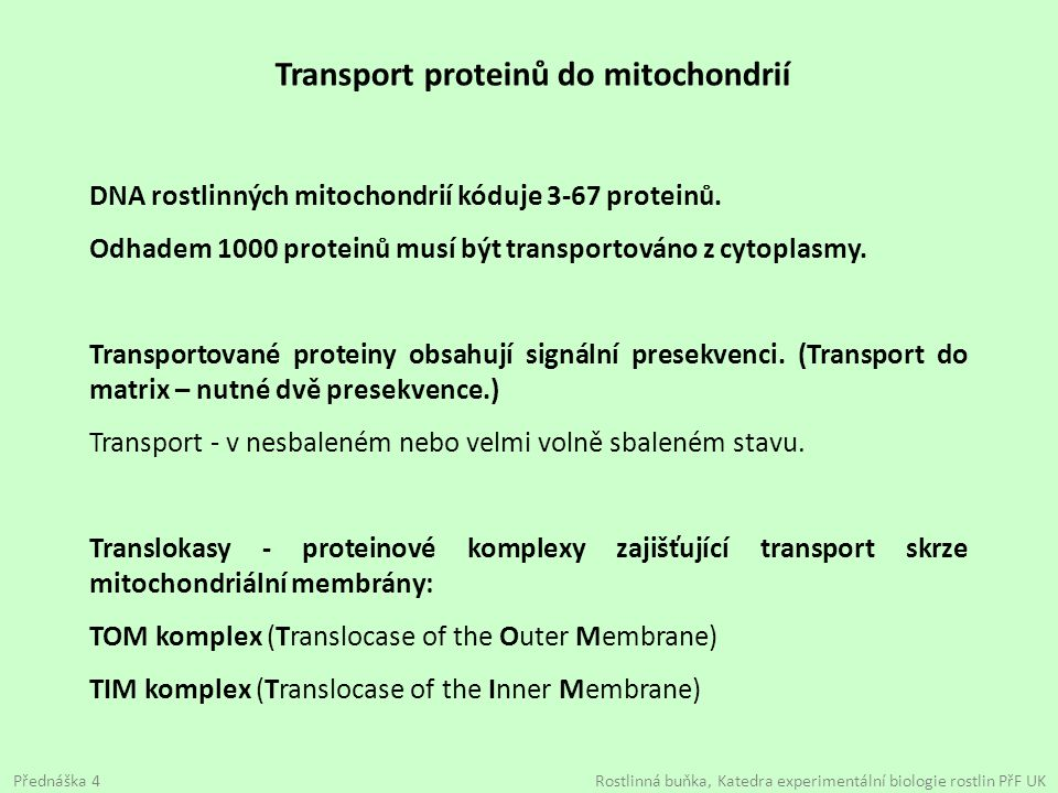 Transport proteinů do mitochondrií DNA rostlinných mitochondrií kóduje 3-67 proteinů. Odhadem 1000 proteinů musí být transportováno z cytoplasmy. Tran