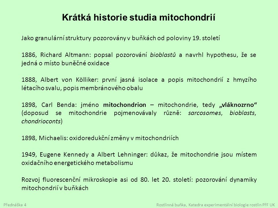 Krátká historie studia mitochondrií Jako granulární struktury pozorovány v buňkách od poloviny 19. století 1886, Richard Altmann: popsal pozorování bi