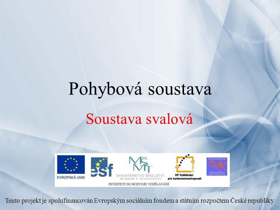 Pohybová soustava Soustava svalová Tento projekt je spolufinancován Evropským sociálním fondem a státním rozpočtem České republiky