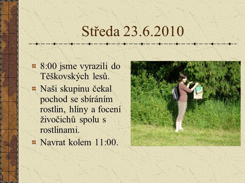 Čtvrtek 24.6.2010 Čtvrteční náplní bylo zpracovat nasbírané informace do prezentace a grafu.