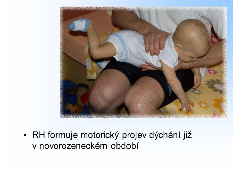 RH formuje motorický projev dýchání již v novorozeneckém období