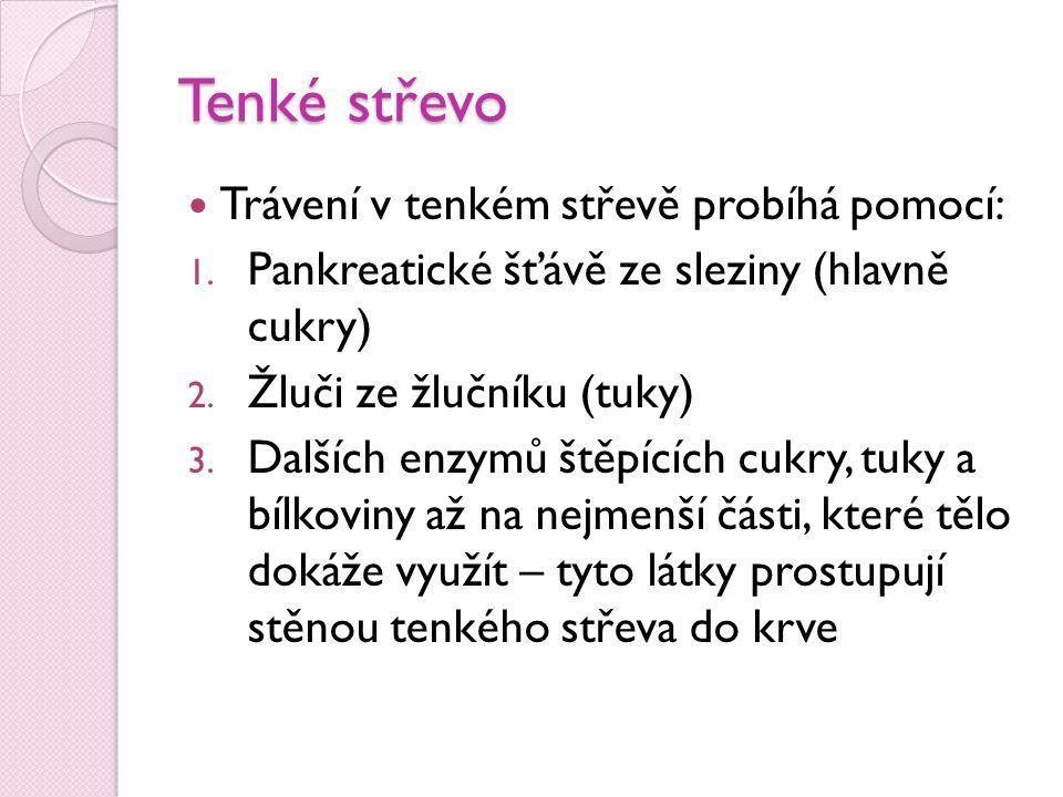 Tenké střevo Trávení v tenkém střevě probíhá pomocí: 1. Pankreatické šťávě ze sleziny (hlavně cukry) 2. Žluči ze žlučníku (tuky) 3. Dalších enzymů ště