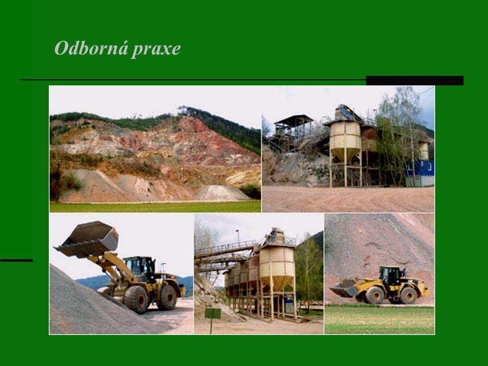 Obor vychovává odborníky a inženýrsko-hospodářské pracovníky v oblasti těžby, zpracování a úpravy stavebních a silikátových surovin pro komodity s uplatněním v průmyslu stavebních hmot (stavební kámen, štěrky, písky všech druhů, cementy, vápno, sádra, výrobky cihlářské).