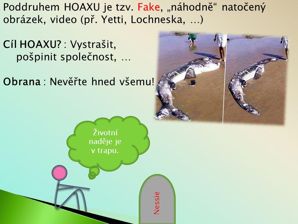 """Poddruhem HOAXU je tzv.Fake, """"náhodně natočený obrázek, video (př."""
