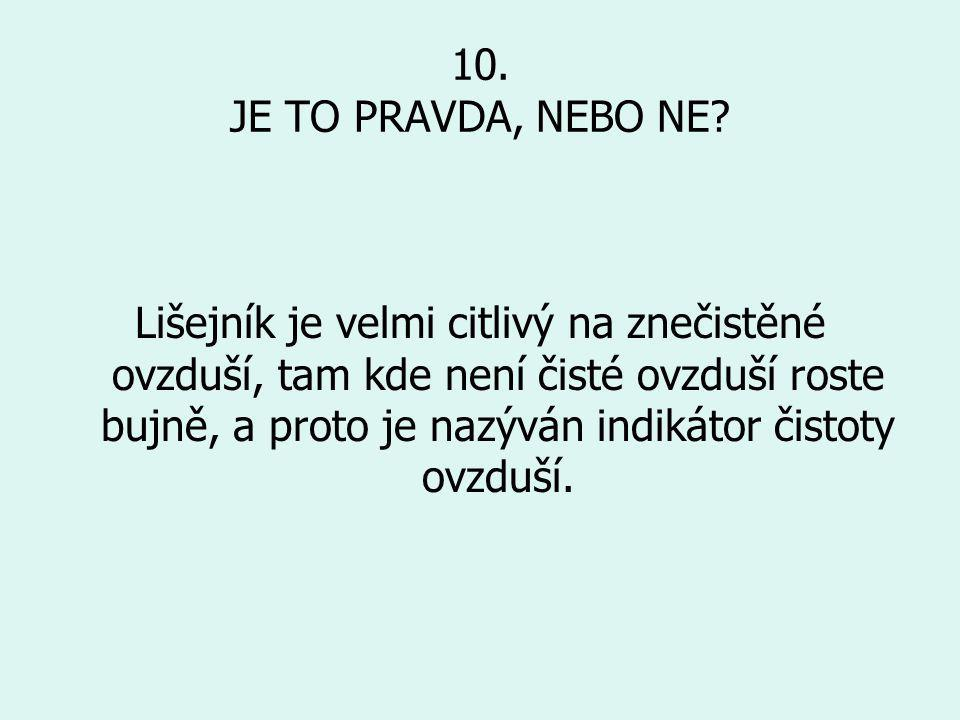 10.JE TO PRAVDA, NEBO NE.