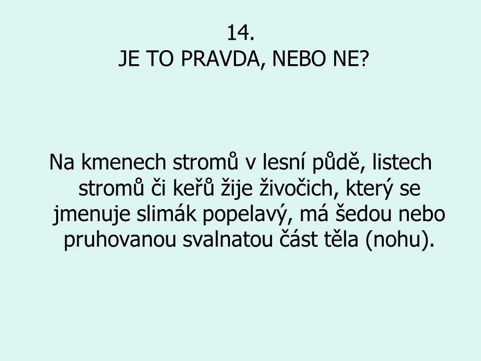 14.JE TO PRAVDA, NEBO NE.