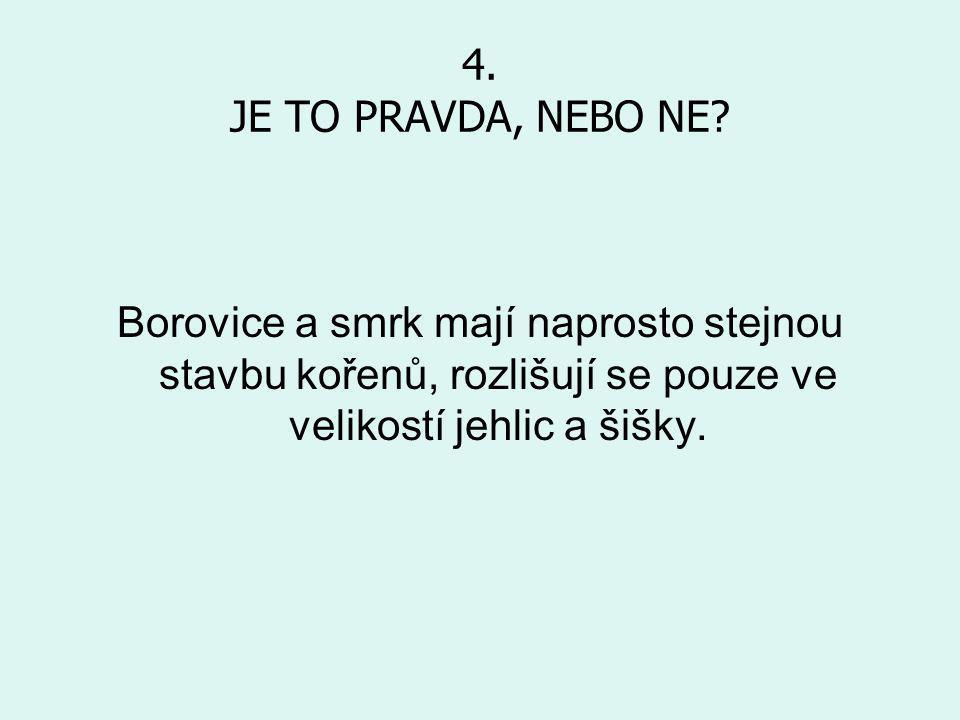 4.JE TO PRAVDA, NEBO NE.