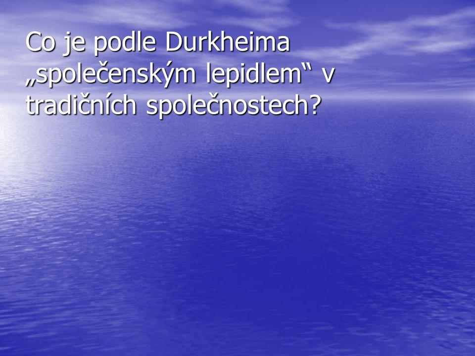 """Co je podle Durkheima """"společenským lepidlem v tradičních společnostech"""