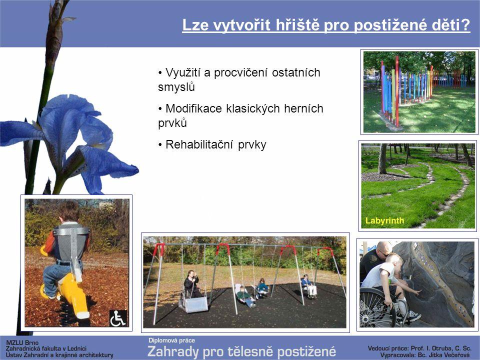 Lze vytvořit hřiště pro postižené děti? Využití a procvičení ostatních smyslů Modifikace klasických herních prvků Rehabilitační prvky