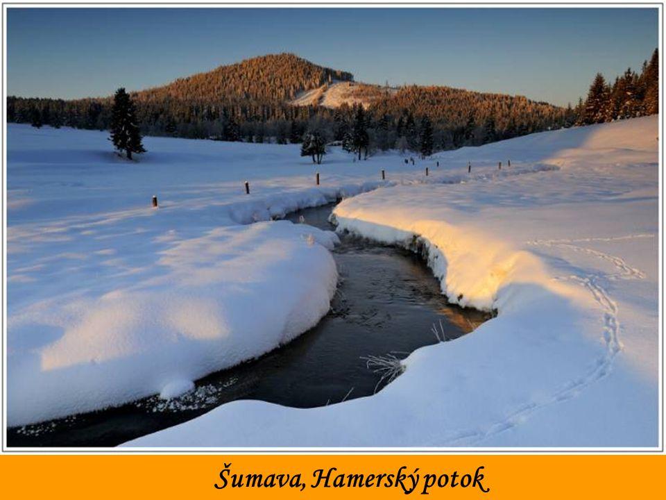 Šumava, ráno u Hamerského potoka
