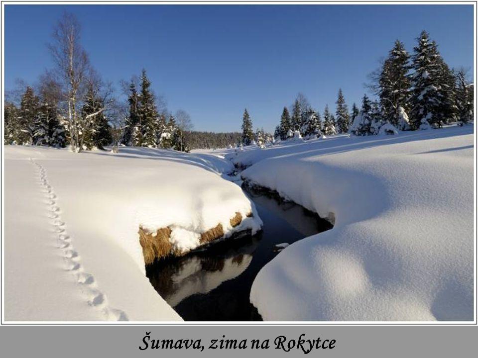 Šumava, Roklanský potok
