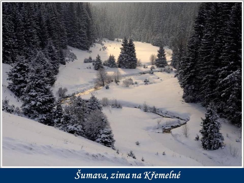 Šumava, zima na Rokytce