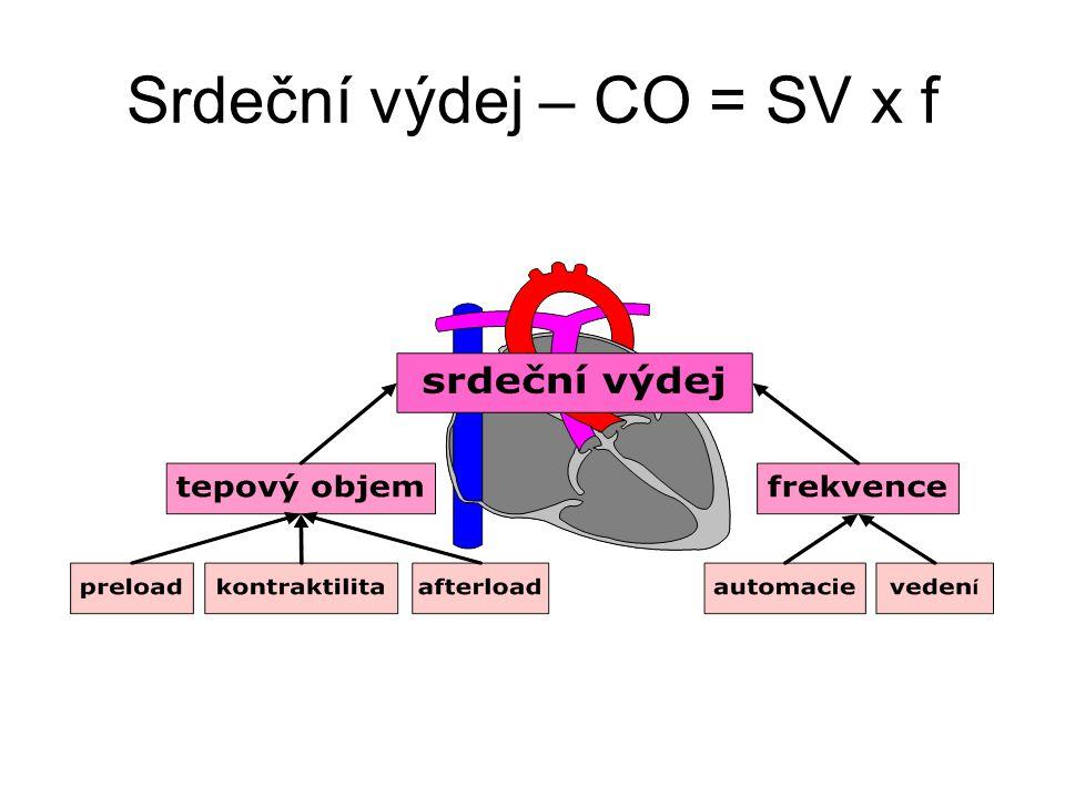 """Interindividuální variabilita Zdroje Příklady Určení """"normy"""