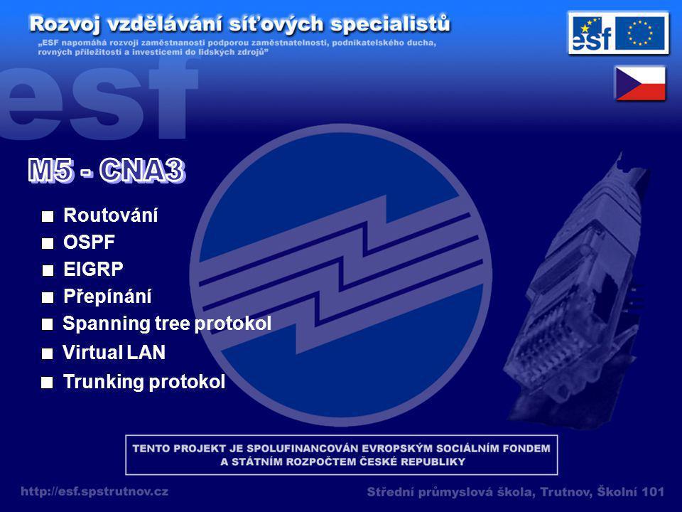 Routování OSPF EIGRP Přepínání Spanning tree protokol Virtual LAN Trunking protokol