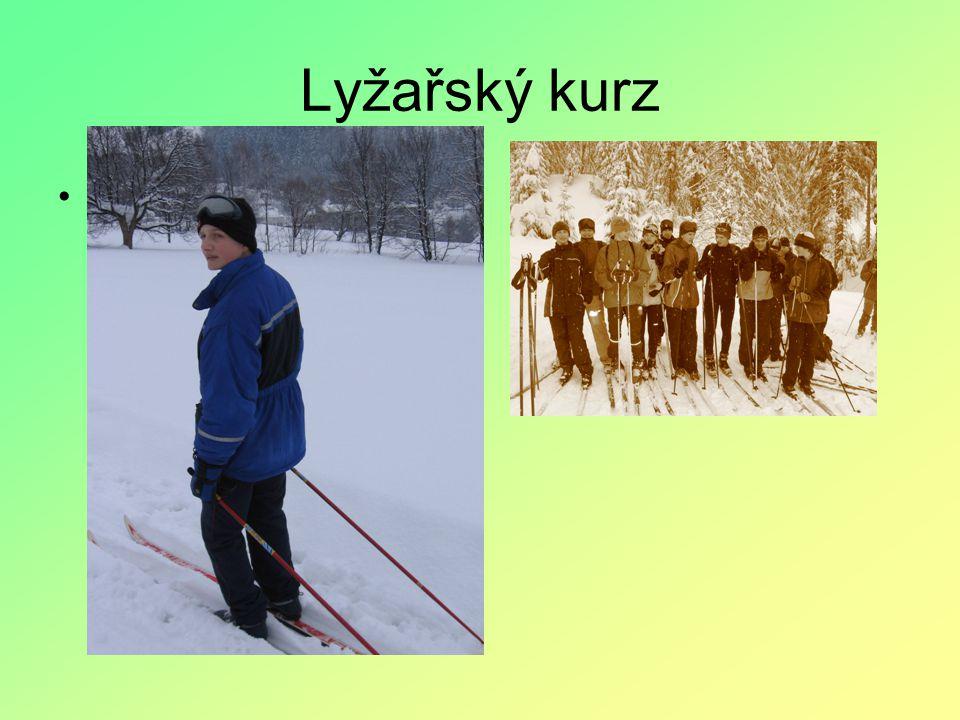 Lyžařský kurz Na tomto kurzu nás profesoři Krupčík, Marčíková a Hrbatchová učí jak správně lyžovat, ale také jak se o lyže máme starat.