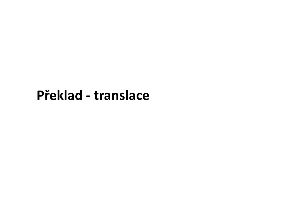 Překlad - translace