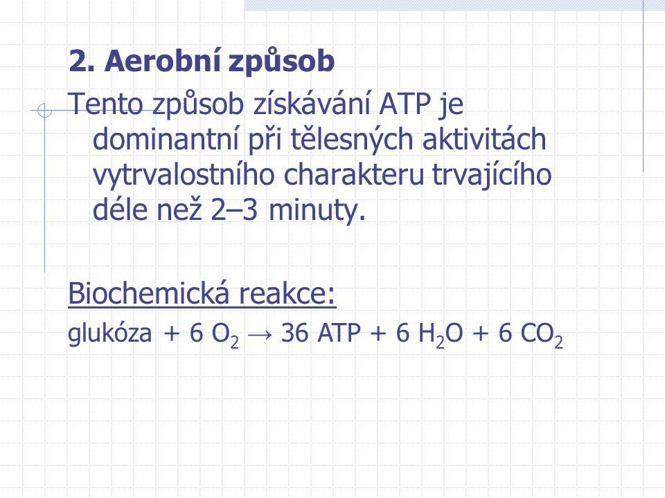 2. Aerobní způsob Tento způsob získávání ATP je dominantní při tělesných aktivitách vytrvalostního charakteru trvajícího déle než 2–3 minuty. Biochemi