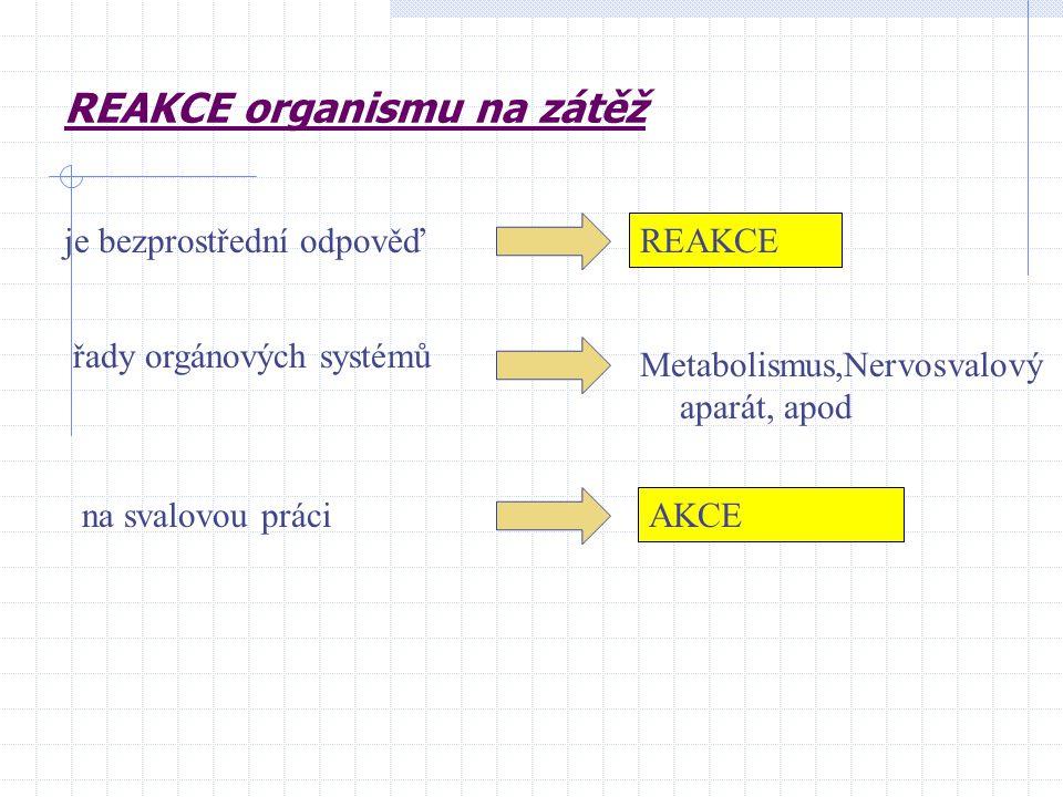 REAKCE organismu na zátěž je bezprostřední odpověď REAKCE řady orgánových systémů na svalovou práci Metabolismus,Nervosvalový aparát, apod AKCE