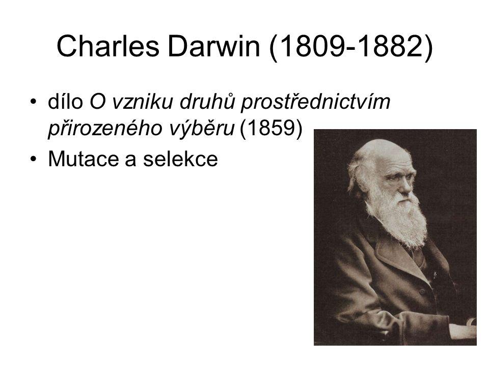 Charles Darwin (1809-1882) dílo O vzniku druhů prostřednictvím přirozeného výběru (1859) Mutace a selekce