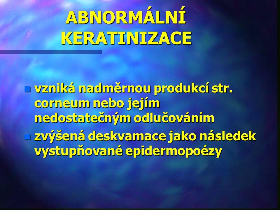 ABNORMÁLNÍ KERATINIZACE n vzniká nadměrnou produkcí str. corneum nebo jejím nedostatečným odlučováním n zvýšená deskvamace jako následek vystupňované