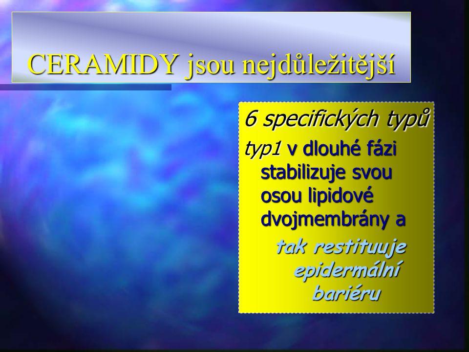 CERAMIDY jsou nejdůležitější 6 specifických typů typ1 typ1 v dlouhé fázi stabilizuje svou osou lipidové dvojmembrány a tak restituuje epidermální bari
