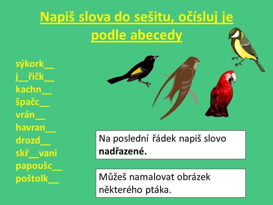 Napiš slova do sešitu, očísluj je podle abecedy sýkork__ j__řičk__ kachn__ špačc__ vrán__ havran__ drozd__ skř__vani papoušc__ poštolk__ Na poslední řádek napiš slovo nadřazené.