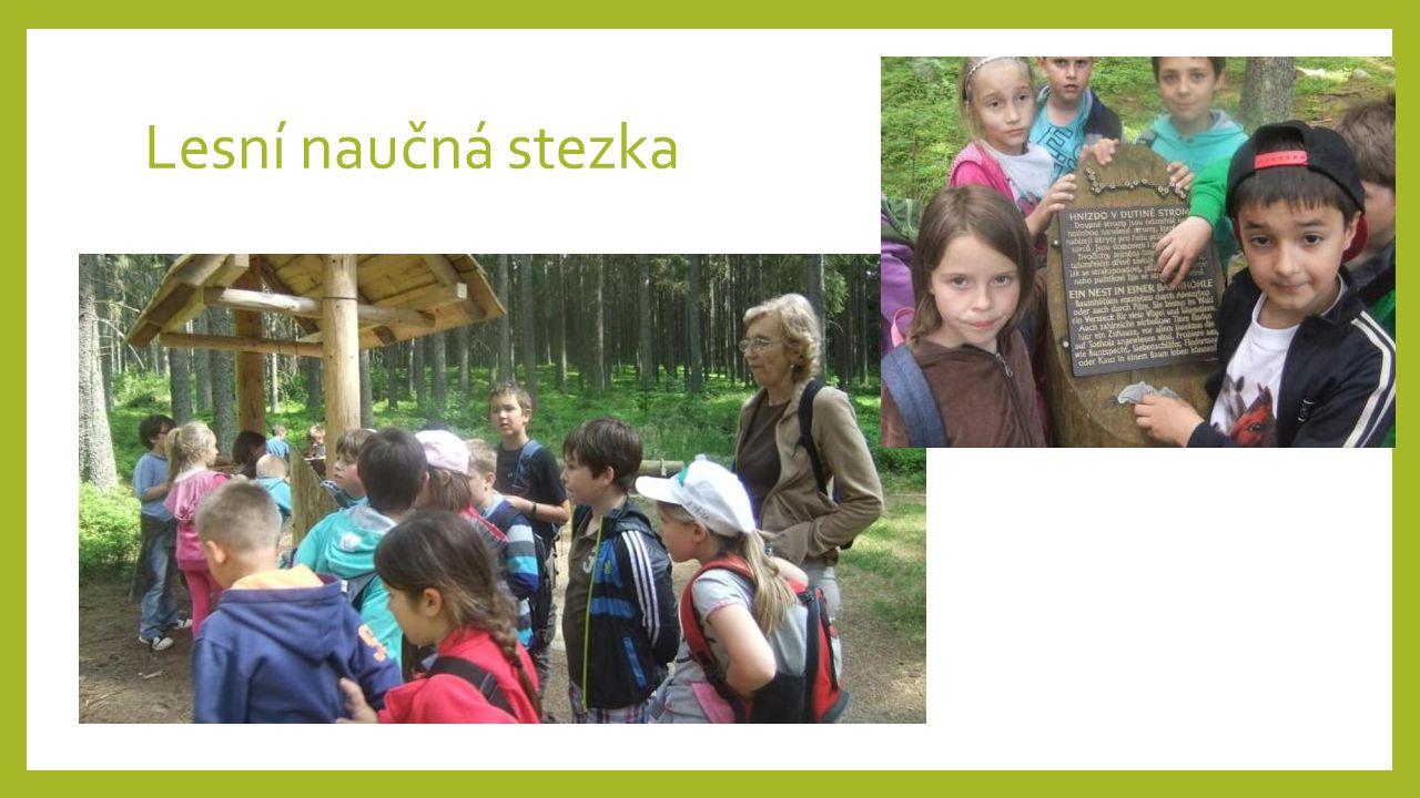 Lesní naučná stezka