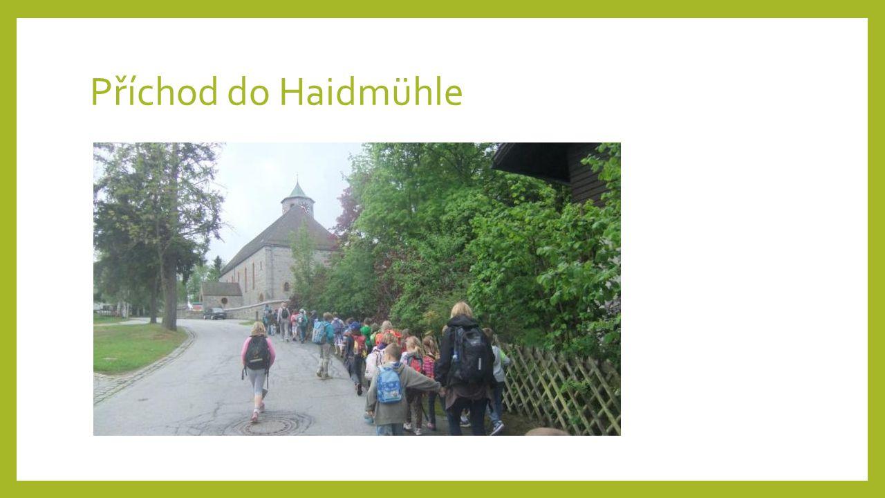 Příchod do Haidmühle