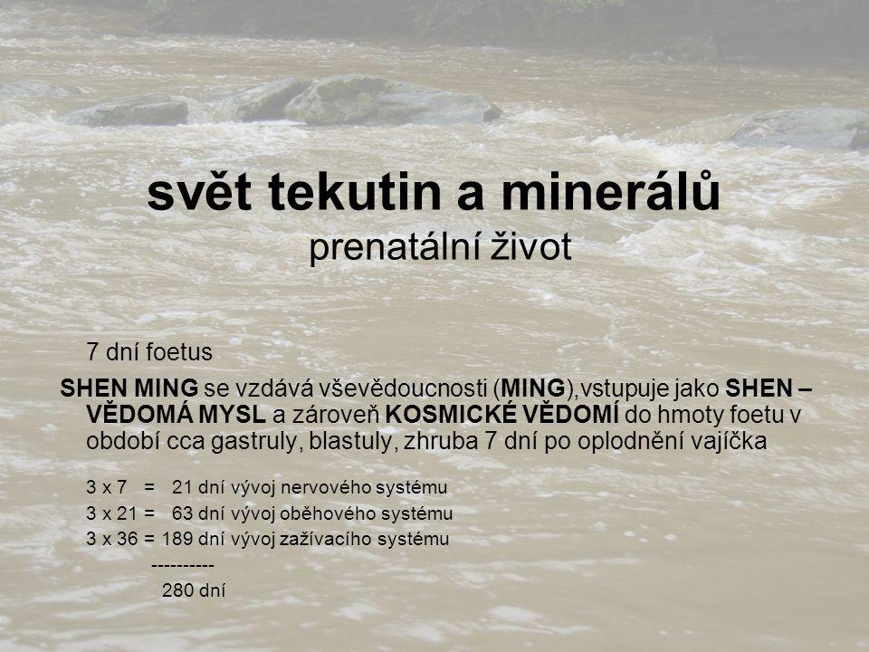 svět tekutin a minerálů prenatální život 7 dní foetus SHEN MING se vzdává vševědoucnosti (MING),vstupuje jako SHEN – VĚDOMÁ MYSL a zároveň KOSMICKÉ VĚDOMÍ do hmoty foetu v období cca gastruly, blastuly, zhruba 7 dní po oplodnění vajíčka 3 x 7 = 21 dní vývoj nervového systému 3 x 21 = 63 dní vývoj oběhového systému 3 x 36 = 189 dní vývoj zažívacího systému ---------- 280 dní