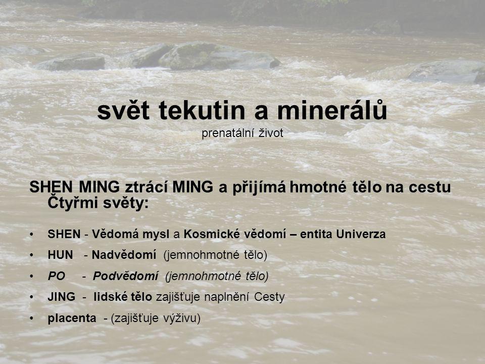 svět tekutin a minerálů prenatální život SHEN MING ztrácí MING a přijímá hmotné tělo na cestu Čtyřmi světy: SHEN - Vědomá mysl a Kosmické vědomí – ent