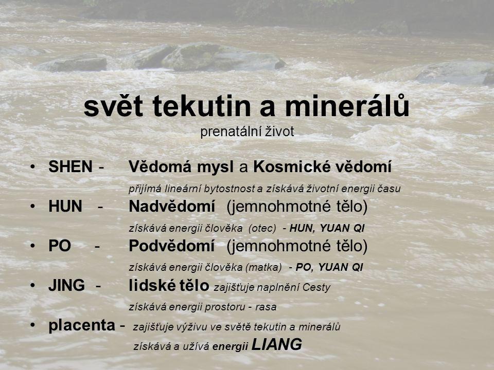 svět tekutin a minerálů prenatální život SHEN - Vědomá mysl a Kosmické vědomí přijímá lineární bytostnost a získává životní energii času HUN - Nadvědo