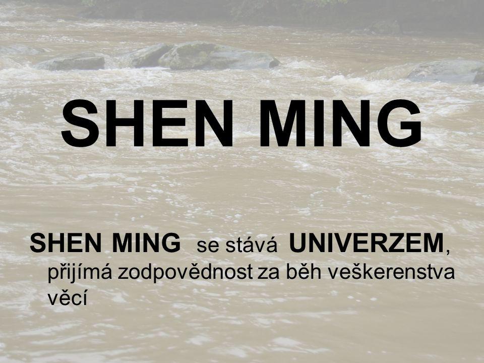 SHEN MING SHEN MING se stává UNIVERZEM, přijímá zodpovědnost za běh veškerenstva věcí